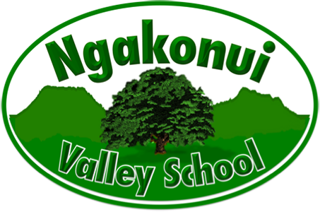 Ngakonui Valley School